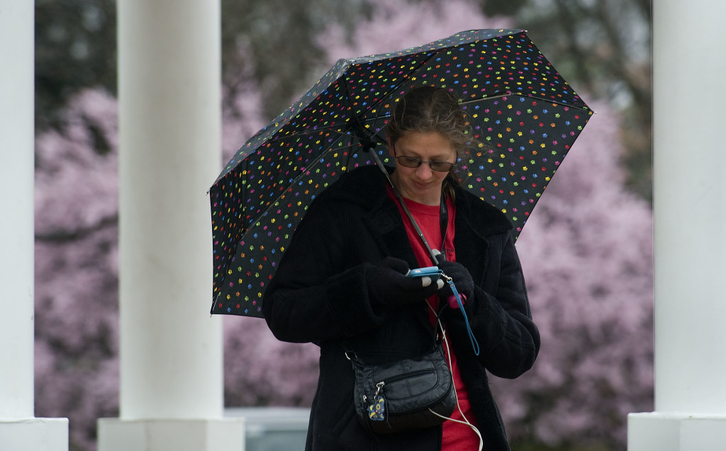 Shannon Staff, of Front Royal, plays her Pokomon Go game on her phone while standing under the gazebo on East Main Street on a cold and rainy Friday morning. Spring-like weather has left us again with more winter-like weather forecast over the weekend. Rich Cooley/Daily