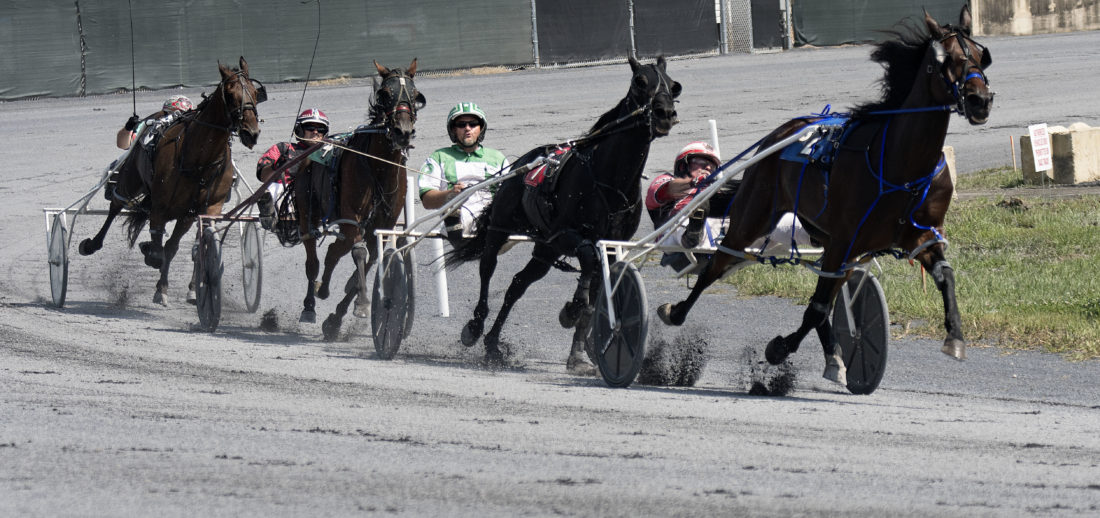 2018_08_29_Fair_Harness1 1100x518 the races attract generations of fans to the shenandoah county fair