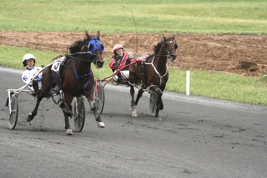 2018 09 16racing6 1100x733 racing returns to shenandoah downs news, sports, jobs the