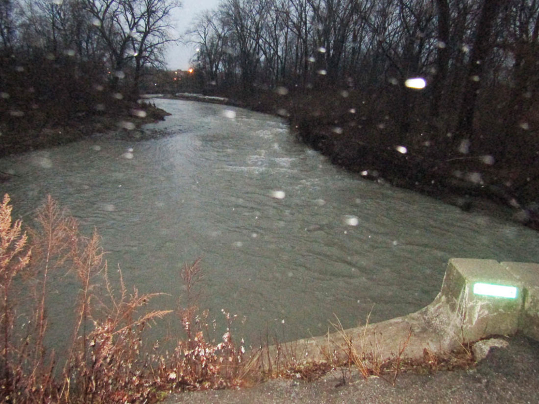 OBSERVER Photo by Gene Pauszek Canadaway Creek was running high and fast Wednesday evening.