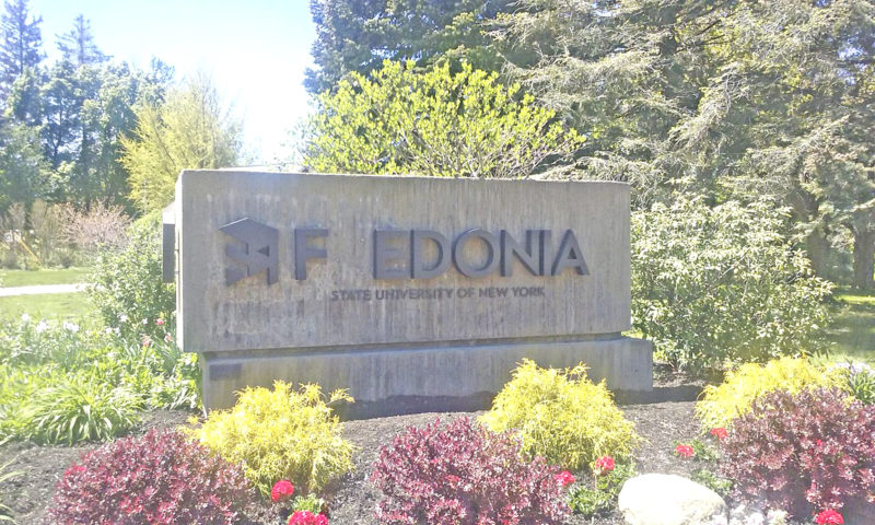 5 - 15 fedonia