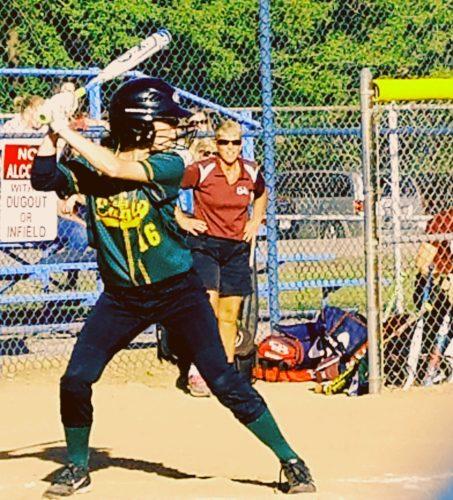 n collins softball