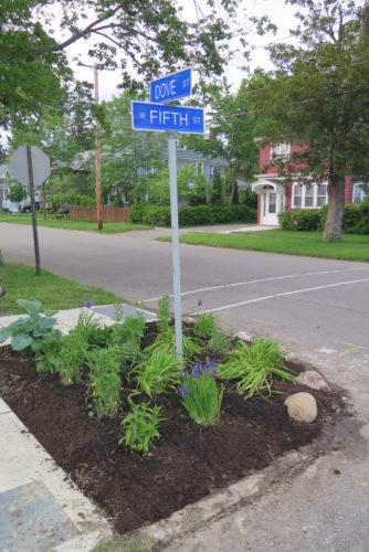 """Submitted Photo A new garden enhances the intersection of Fifth and Dove streets, a formerly neglected and unattractive corner in the Academy Heights area of the Second Ward in the city of Dunkirk. Mary and Steve Rees, long-time residents of Dove Street, installed this latest in a series of neighborhood corner pocket gardens using a variety of low-maintenance perennial plants from their own yard that should bloom throughout the summer. The Reeses, both of whom are Chautauqua County Master Gardener volunteers, have contributed plants and labor to other neighborhood gardens as well, including those at the corners of Fifth and Swan, Fifth and Central, and Dunkirk High School's Bicentennial Park. All these gardening initiatives were started by Harriet """"Skeeter"""" Tower, president of the Academy Heights Neighborhood Association."""