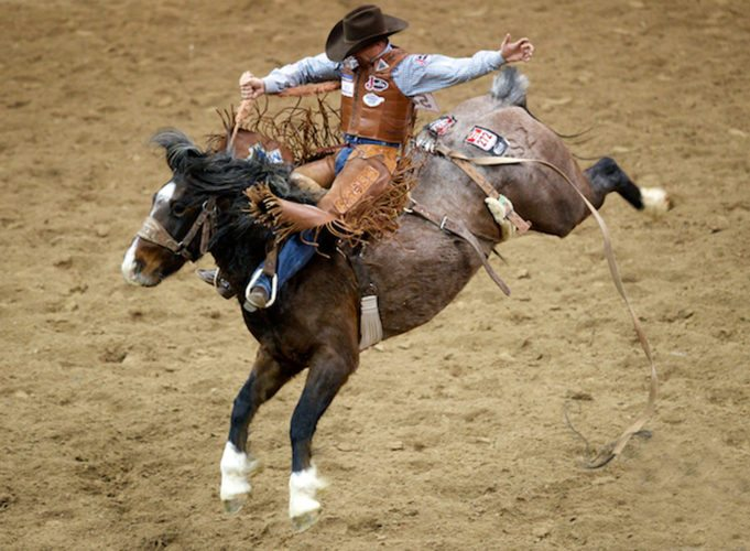 Submitted Photo Twelve-time National Finals Rodeo saddle bronc qualifier Cody DeMoss is among the 251 competitors registered for next week's Gerry PRCA rodeo.
