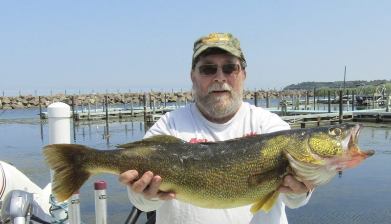 Submitted Photo Gene Pauszek displays an 11-pound-4 ounce walleye caught while fishing with Sassafras Charters on Monday.