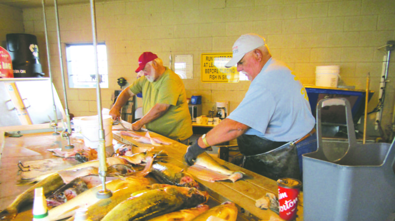 OBSERVER Photo by Gene Pauszek Captains Lance Ehrhardt and Phil Switkowski are busy cleaning donated walleye for the annual VIP day dinner. Close to 100 walleye are collected for the event and Captain Lance had a hand in cleaning all of them!
