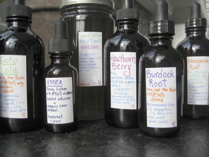Submitted Photo On Saturday, Sept. 23 from 10 a.m. to noon, Greystone Bat, Bird and Butterfly Sanctuary (Greystone Nature Preserve) will partner with Sarah Sorci of Sweet Flag Herbs to offer a class entitled The Basics of Herbal Tincture Making.