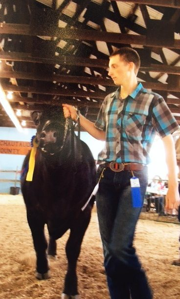 Braden Lesch shows his 1,400-pound steer at the Chautauqua County Fair.