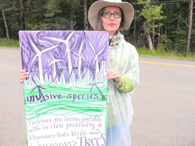 OBSERVER file photo Joni Riggle of Concerned Citizens of Cassadaga Wind Project holds her sign during a recent protest. Arkwright town officials insist nothing has been hidden from the public over the years.