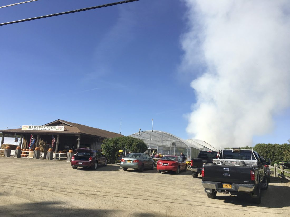 OBSERVER Photo by Gregory Bacon Haybales that were used as a maze caught fire Friday afternoon in a greenhouse at Harvest View Greenhouse.