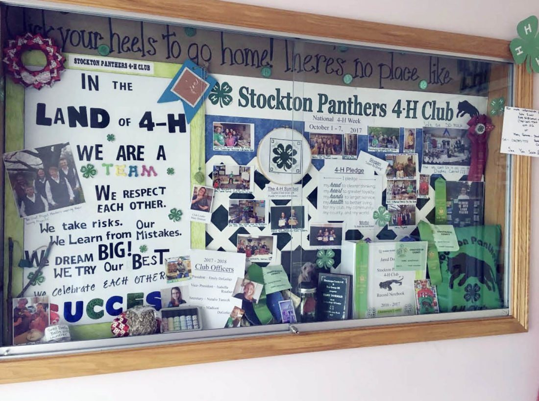 Submitted Photo Pictured is one of the three displays the Stockton Panthers 4-H Club completed in the Sinclairville Library in celebration of National 4-H Week.