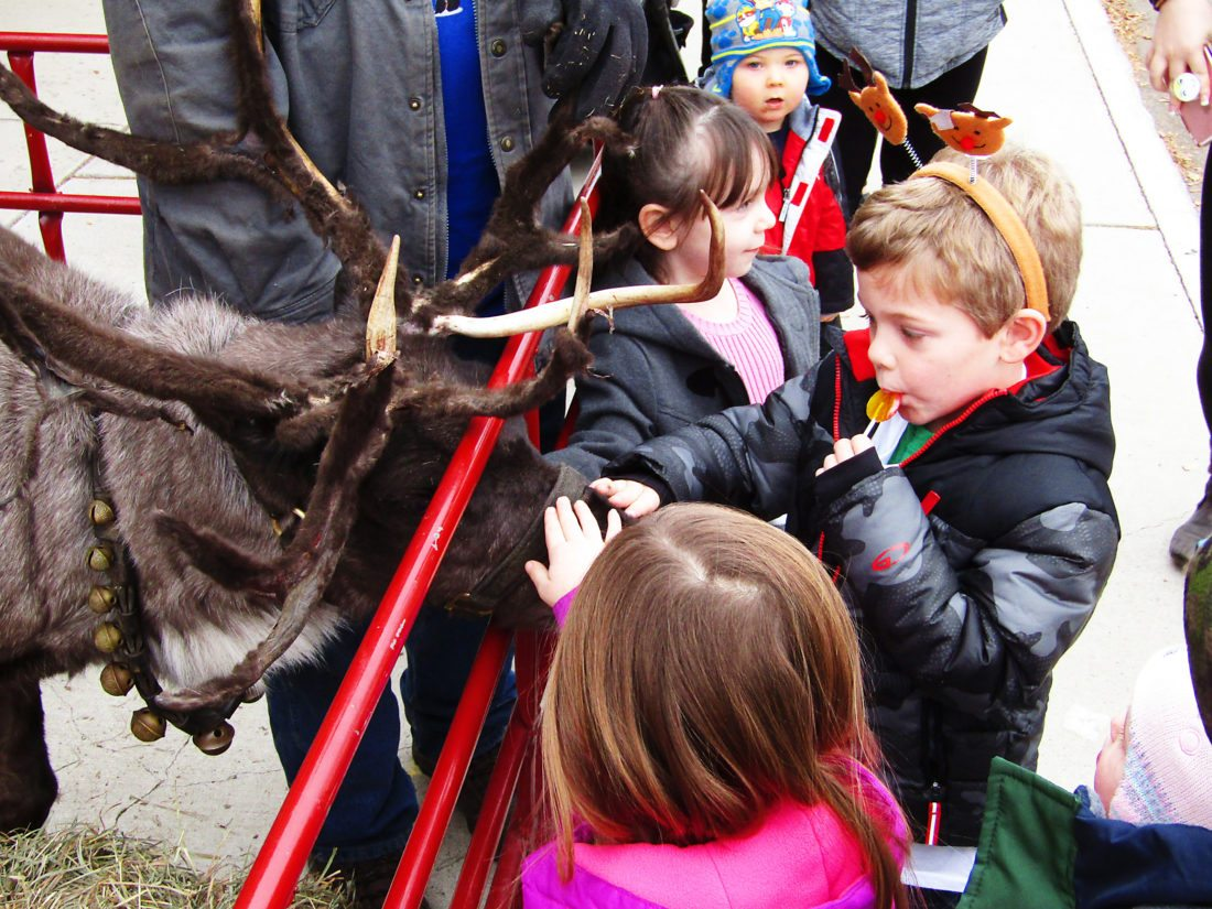 OBSERVER Photo by Greg Fox: A Rudolph fan pets the nose of one of Santa Claus' famous reindeer, Dancer, during the Silver Creek Kiwanis Club's Christmas in the Park event Saturday.
