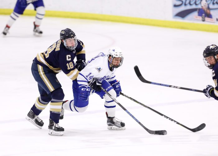 OBSERVER Photo by Joe Conti Fredonia's Kyle Jelinski tussles with Reily McIntosh of Canton during the Blue Devils' victory Friday night in Steele Hall.