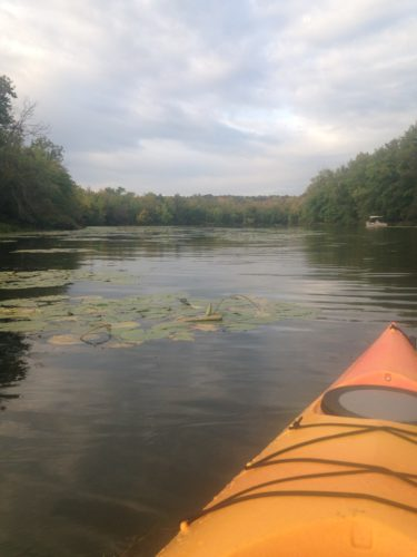 I love kayaking the Chautauqua Lake Outlet, which is the start of the Chadakoin River and part of the Mississippi River watershed. Photo by Jen Maguder