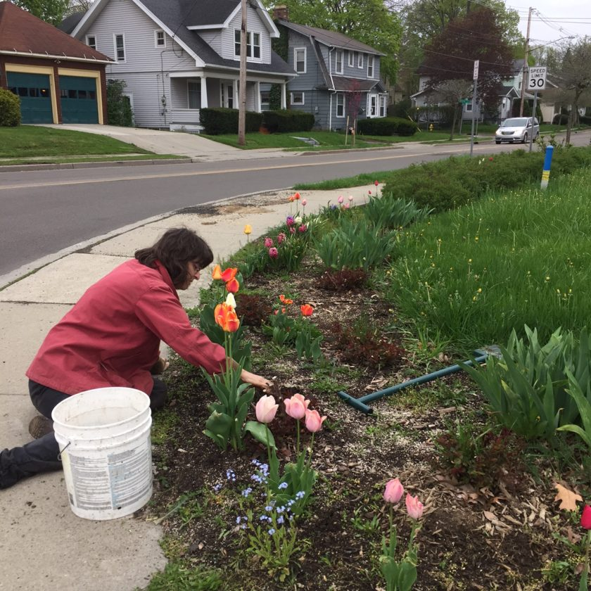 Mary Maxwell tends a flower garden at the corner of Fairmount and McDaniel Avenues to improve the appearance for passersby and for the people living in the neighborhood. She hopes others will realize they can improve their neighborhoods by planting gardens or picking up trash, something she has done for 30 years.