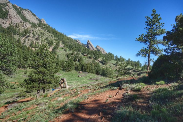 The view along the trail.