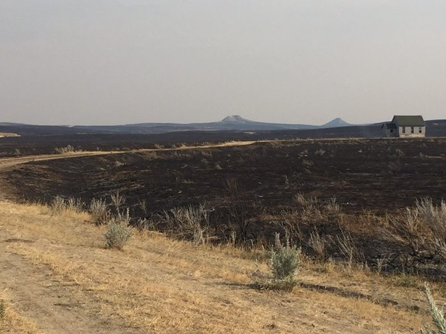 Emergency funds granted for Lodgepole Complex Fires