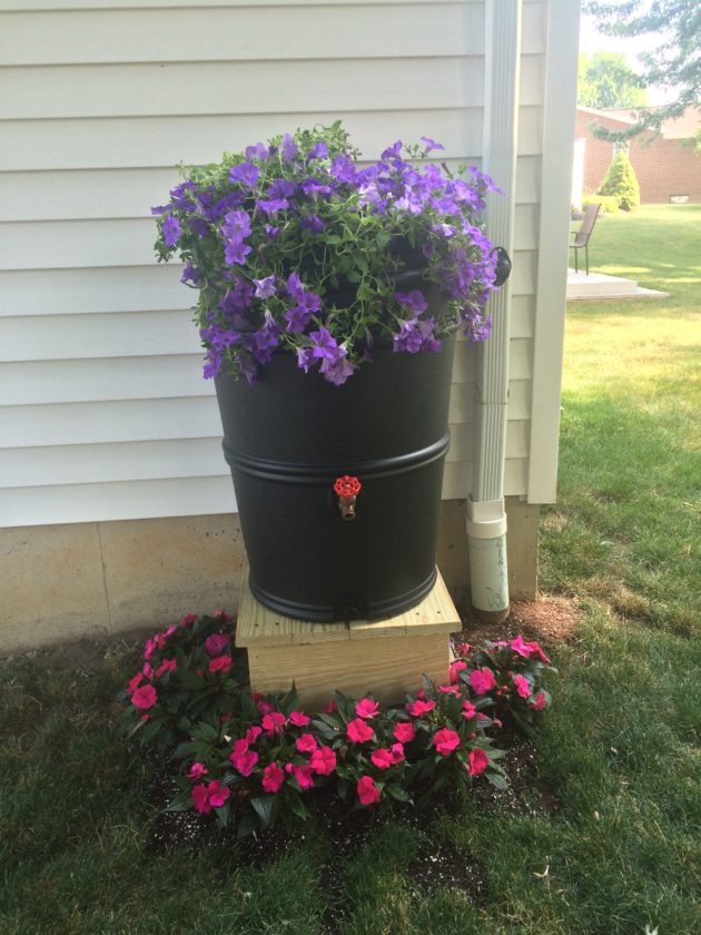 Rain barrels such as this one can help slow the flow of stormwater runoff from your home.  Photo by Jen Maguder