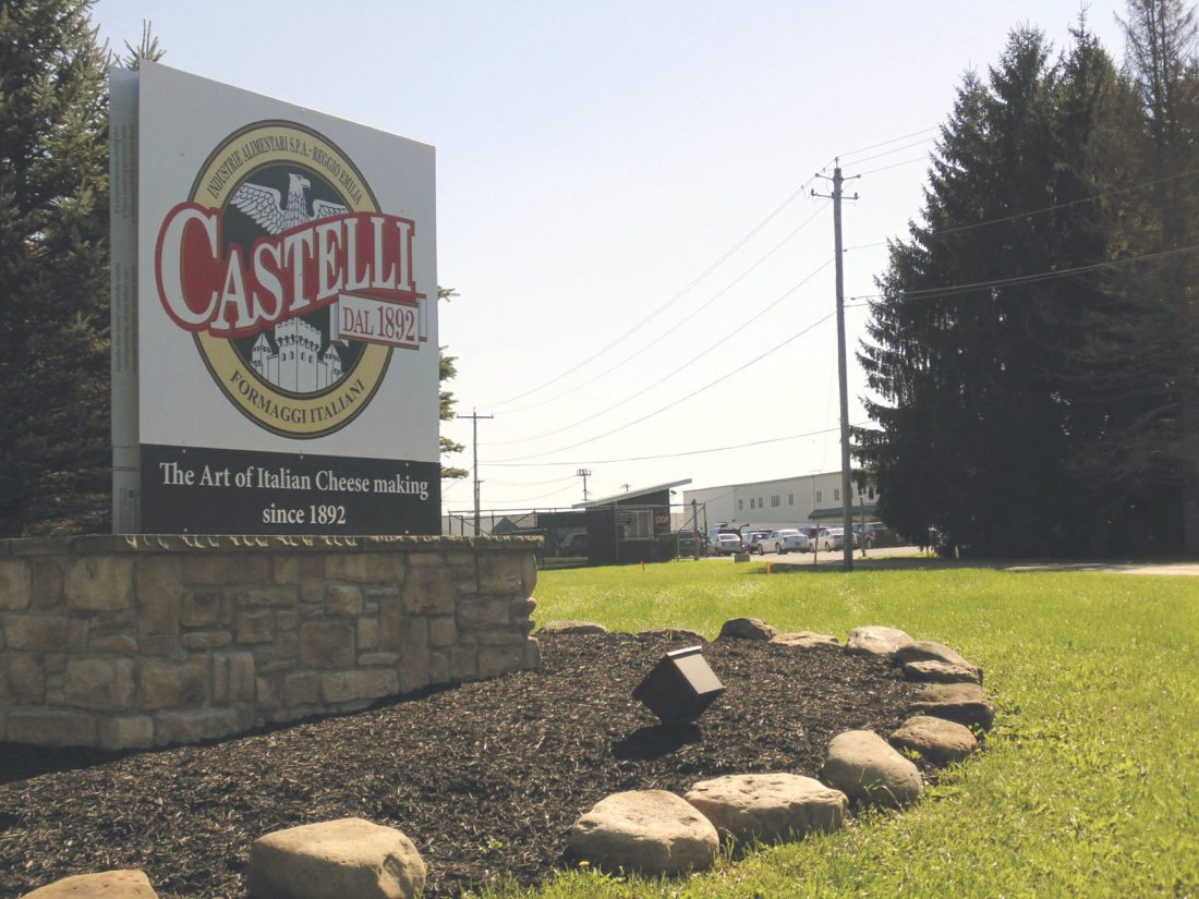 Castelli America received an award of excellence at the New York State Fair's Dairy Competition in the ricotta cheese category. Castelli America, a new subsidiary of Nuova Castelli Group, has a plant in Blockville and began operations September 2016.  P-J file photo