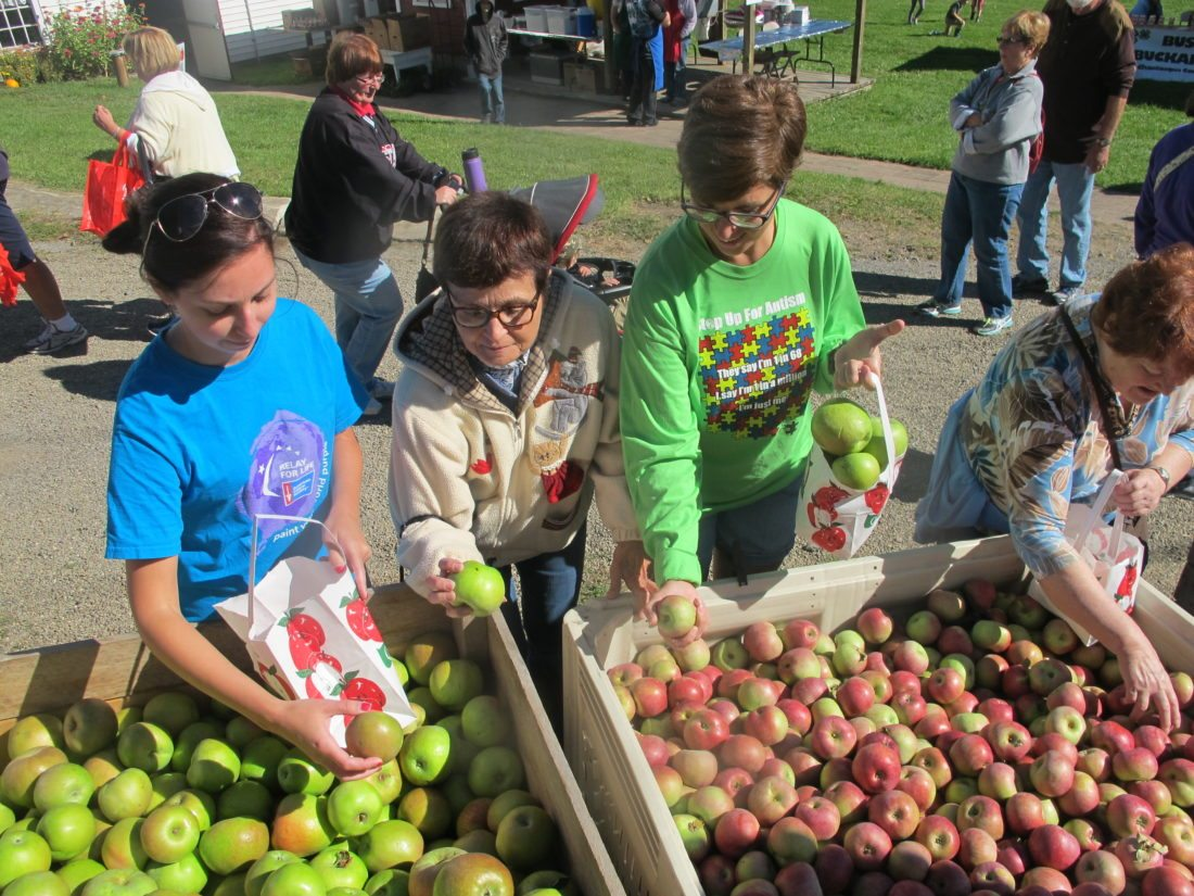 The Busti Historical Society and Busti Volunteer Fire Department will present the 43rd annual Busti Apple Harvest Festival on their grounds at 3443 Lawson Road on Sunday, Sept. 24, from 11 a.m. to 5 p.m. P-J file photos