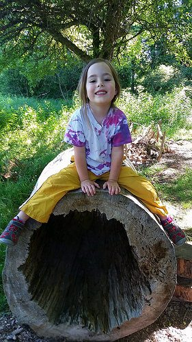 The Audubon Community Nature Center will host Nature Play Day on Sunday, Sept. 17, for children between the ages of 2 and 8 and their favorite adults. In addition to natural play equipment like the hollow log pictured, extra materials will be placed in the play area such as mud pie kitchen equipment, hammocks, weaving material or natural building materials.