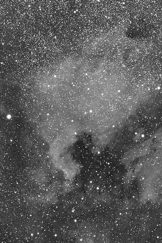 Bearing a resemblance to the continent of North America, this immense cloud of gas and dust is visible this month in small wide-field and low-power telescopes. It lies about 1800 light-years away in the constellation Cygnus.                   Courtesy  One-Minute Astronomer
