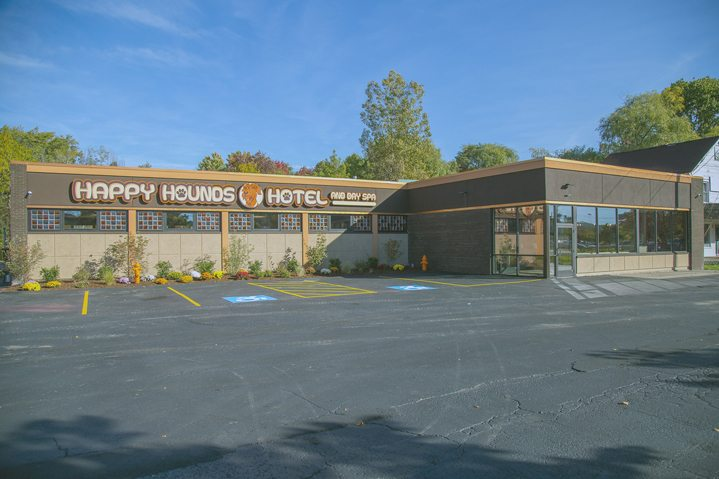 The owners of Happy Hounds Hotel and Day Spa, Lee and Wendi Lodestro, are celebrating their first anniversary Saturday with a customer appreciation day. Submitted photo