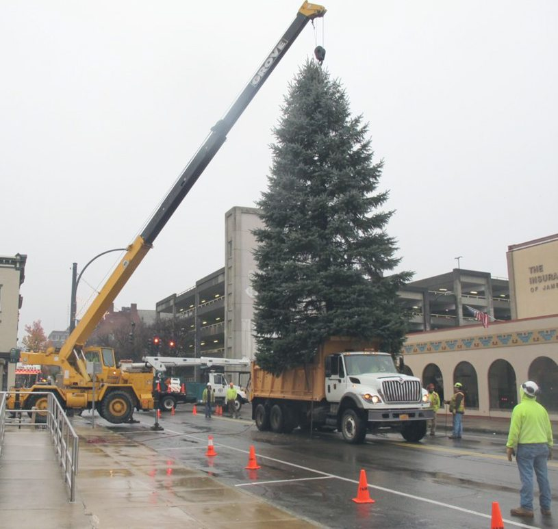 Too soon? Huge Christmas tree arrives at New York's Rockefeller Center
