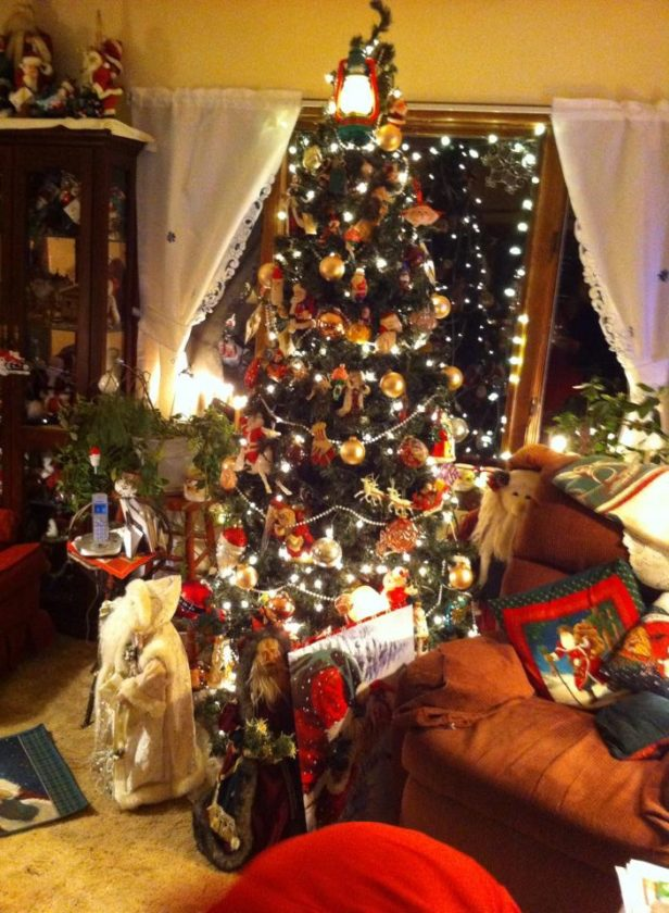 One of three Christmas trees found in the home of Brenda and Bob Franzen.