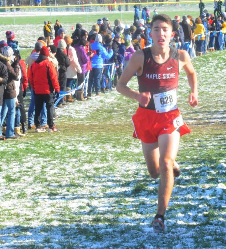 Maple Grove senior Michael Peppy was named to the cross country Class D First Team on Tuesday. P-J file photo