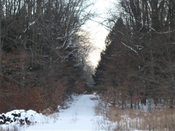 "A snow covered trail just waiting to be explored — could this be your ""happy place""?  photo by Susan M. Songster Weaver"