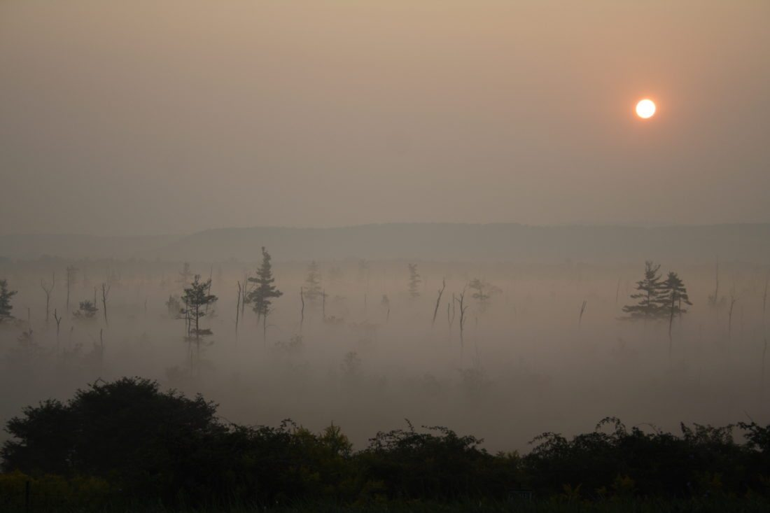 Sunrise over the swamp on Route 62 south of Jamestown in September 2007.