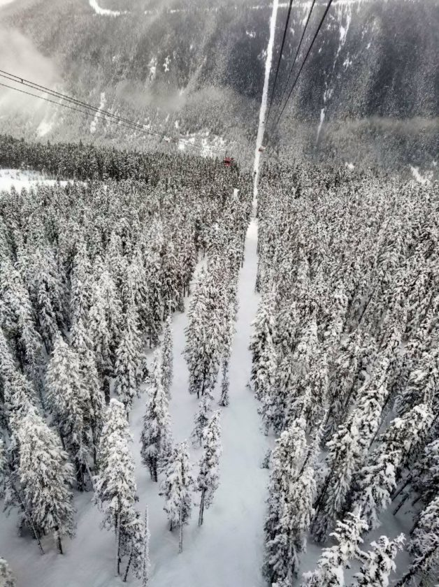Whistler Mountain, Vancouver, British Columbia.  Photo by Brennan Robison,  February 2018