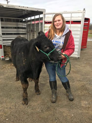 """Holly Crandall with her Angus Crossbred steer during the initial weigh-in for the 2018 Beef Project. """"As a kid, my dad talked a lot about the fun he had showing beef cattle and thought I should give it a try,"""" Crandall said. Submitted photo"""