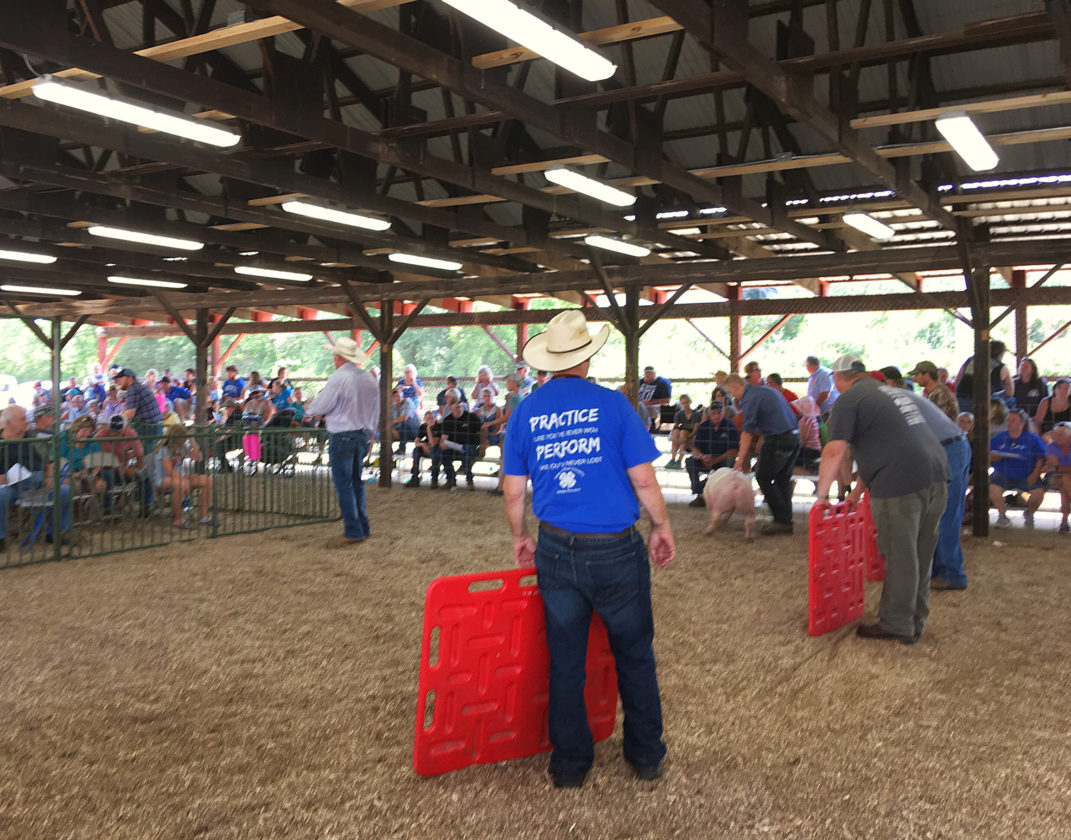 4 hers sell animals with pride at county fair news sports jobs the 4h meat auction took place on friday to packed group of buyers thecheapjerseys Choice Image