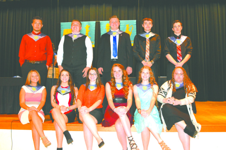 Wellsville High School inducted the following Juniors into the National Honor Society. Front (from left):  Syndi Hamilton, Lindsay Ammon, Heather Shafer, Emily Skinner, Jessica Crabtree, Casey Yos; back row: Cameron Cramer, Ryan Miller, Austin Dalrymple, Jeremy Barton, David Thompson. (Submitted photo)
