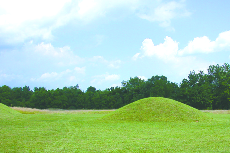 Recent photo of the ellipsis mound group. Courtesy of the Kentunhe Hill/Ellipsis Mound Group Regional Historical Site. (You may also notice the tracks from Curly Dowd's four-wheeler, even though he's not supposed to ride it in the historic area.)