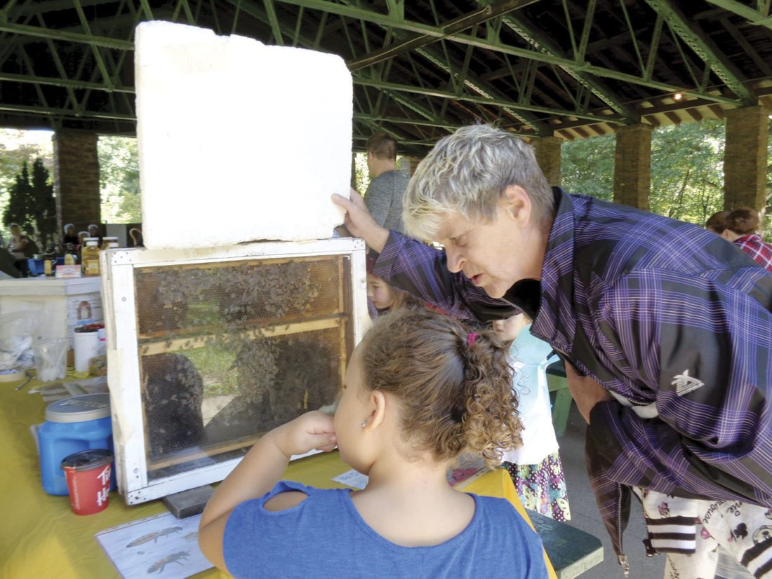 Pictured are Jackie Long and granddaughter learning about bees. (Submitted photo)