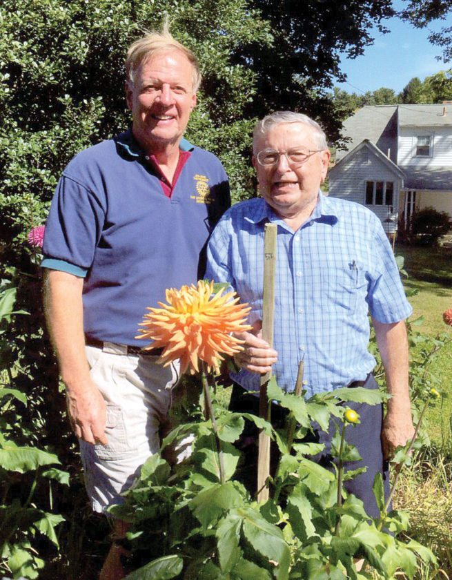Mike Parkes (left) and Gene Toot, longtime treasurer and president of the East Liverpool Dahlia and Floral Society, display a large dahlia in Toot's garden. (Submitted photo)