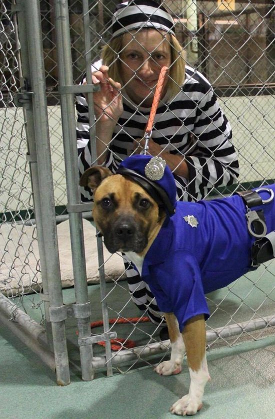 PHOTO PROVIDED Luke, poses in his Halloween costume in 2015 with a friend at the Lycoming County SPCA.