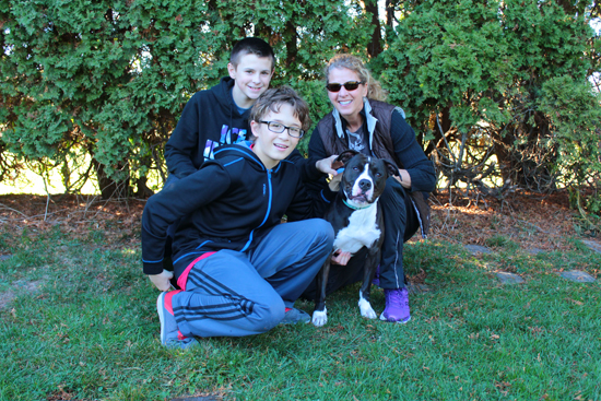 MEGAN E. BLOOM/Sun-Gazette The students learned about persuasive techniques in the class and are going beyond the walls of the school to practice what they were taught. They hope to get all of the dogs adopted once the commercial goes online. Shown: left, Gavin Turner, 13; center, Tyler Fausnaught, 14; and right, Robyn Hannan, eighth grade language arts teacher, with the dog, Daisy.