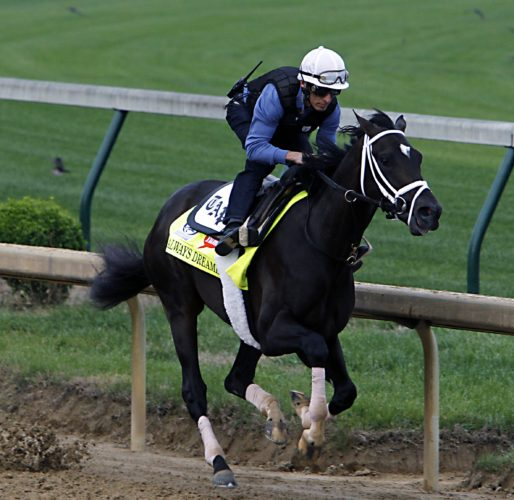 ASSOCIATED PRESS Always Dreaming is the son of 2012 Kentucky Derby runner-up Bodemeister.