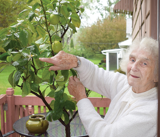 BECKY LOCK/Sun-Gazette Edie DeMarco points to a flower on the lemon tree she's had for 30 years. Two lemons are slowly ripening on the tree too.