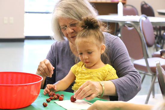 PHOTO PROVIDED STEP Clinton County Community Center senior Barbara Hendricks and an Early Learning child prepare harvested strawberries.