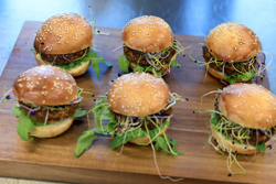 FILE - In this Aug. 14, 2017 file photo insect burgers are presented in Zurich, Switzerland. Swiss supermarket chain Coop, to a bit of hoopla, began selling ÒburgersÓ and ÒballsÓ made from insects. ItÕs billed as a first in Europe, a continent more accustomed to steak, sausage, poultry and fish as a source of protein rather than bugs that can be found in places like Africa or Asia. (Walter Bieri/Keystone via AP, file)