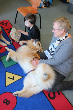 CARA MORNINGSTAR/Sun-Gazette Gavin Blanksby, third grader, reads to Ellie, the therapy dog, as Pat Peltier, outreach counseler and therapy dog handler, sits by during the Biscuit Buddies event at Central Elementary School in South Williamsport recently.