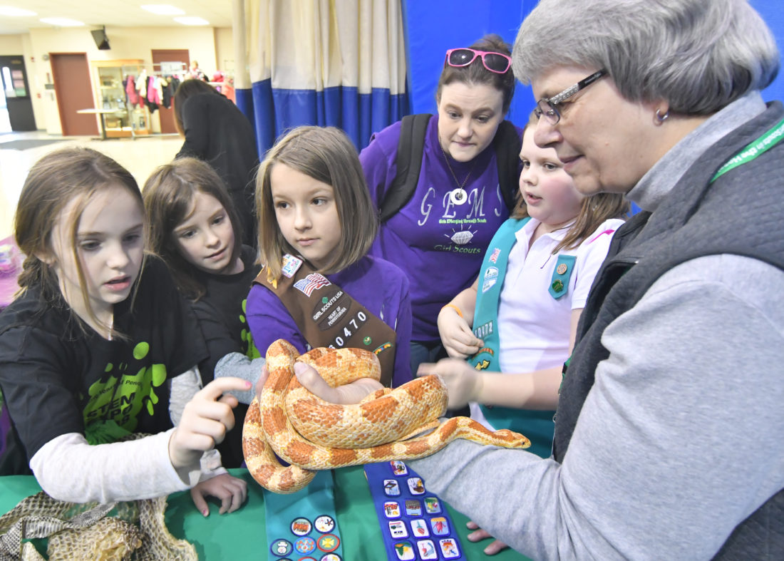 MARK NANCE/Sun-Gazette Girl Scouts from Troop 60470 touch a corn snake held by Ann Gardner, of Clyde Peeling's Reptiland, during a STEM (science, technology, engineering and mathematics) expo at Pennsylvania College of Technology on Saturday.