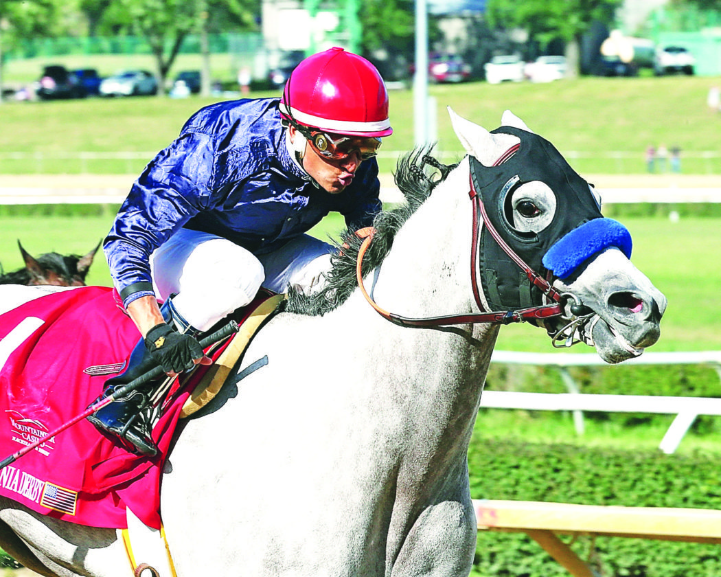 Photo Provided A horse runs in the West Virginia Derby at Mountaineer Casino, Racetrack & Resort on Aug. 6.