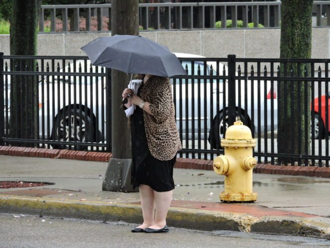 Photo by Casey Junkins A pedestrian walks by a fire hydrant on Market Street in Wheeling. City leaders may use $100,000 worth of federal Community Development Block Grant money to replace 14 fire hydrants.
