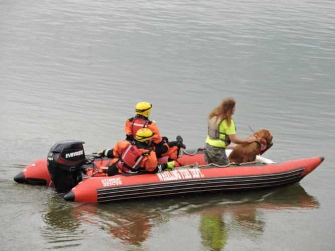 Photo by Casey Junkins Wheeling Fire Department search and rescue teams work at the point where Wheeling Creek meets the Ohio River Tuesday.